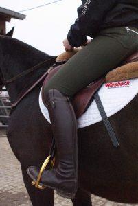 Reiten Pferd Reitsport