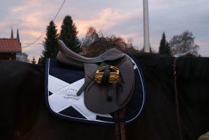 Pferd Eskadron Reitsport