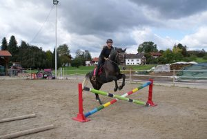 Reiten Pferd Turniersport