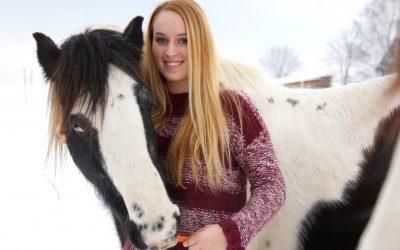 Abstand von den Pferden