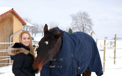 Mein mittelmäßiges Pferd