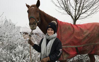 Pferdekauf – Future zieht in unseren Stall!
