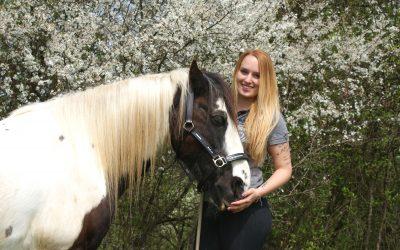 Eure Fragen über meine Pferde und mich