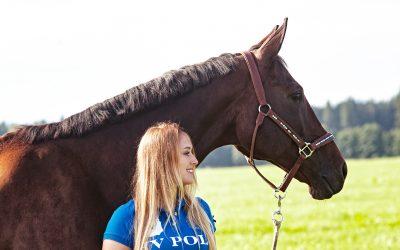 Freiarbeit – wenn Pferde wieder aufblühen
